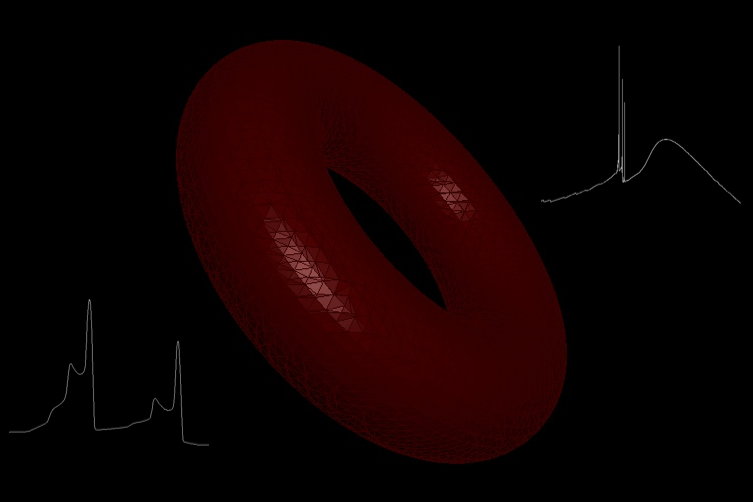 3D depiction of torus for the MYTorus XSPEC model